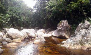 rio-colorado-panama