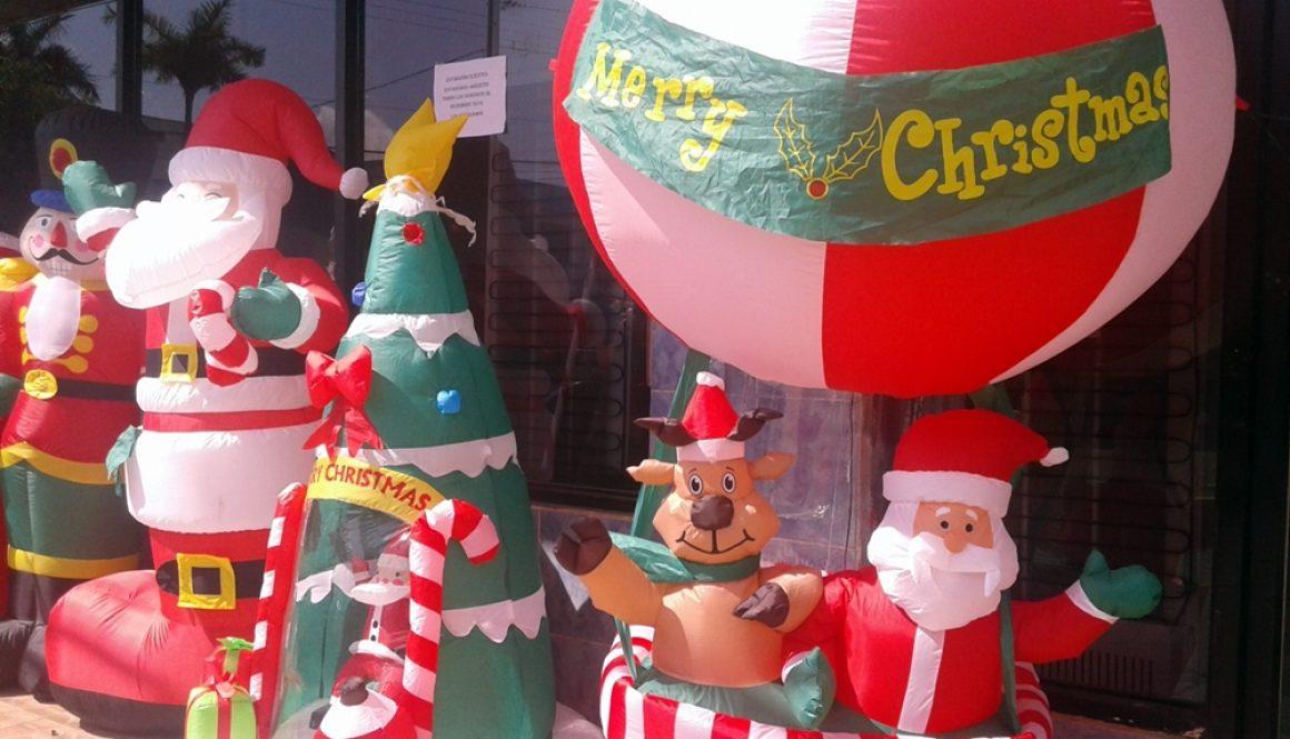 Tropische Vorweihnachtszeit – Dezember 2016