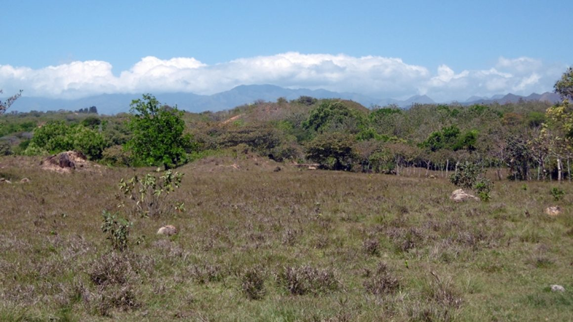 Finca in Panama 5,7 Hektar mit Fluß und Bergpanorama