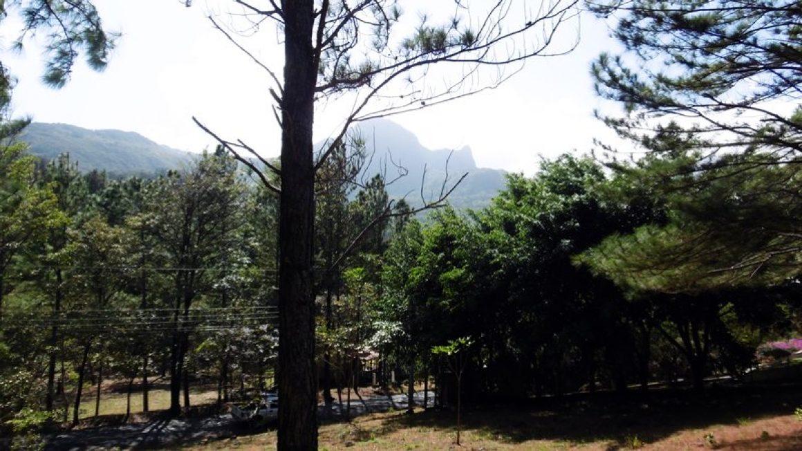 Altos del Maria – Grundstück in Panamas exklusivster Natur-Community